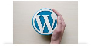 Buenosites - criação de sites wordpress e logotipos