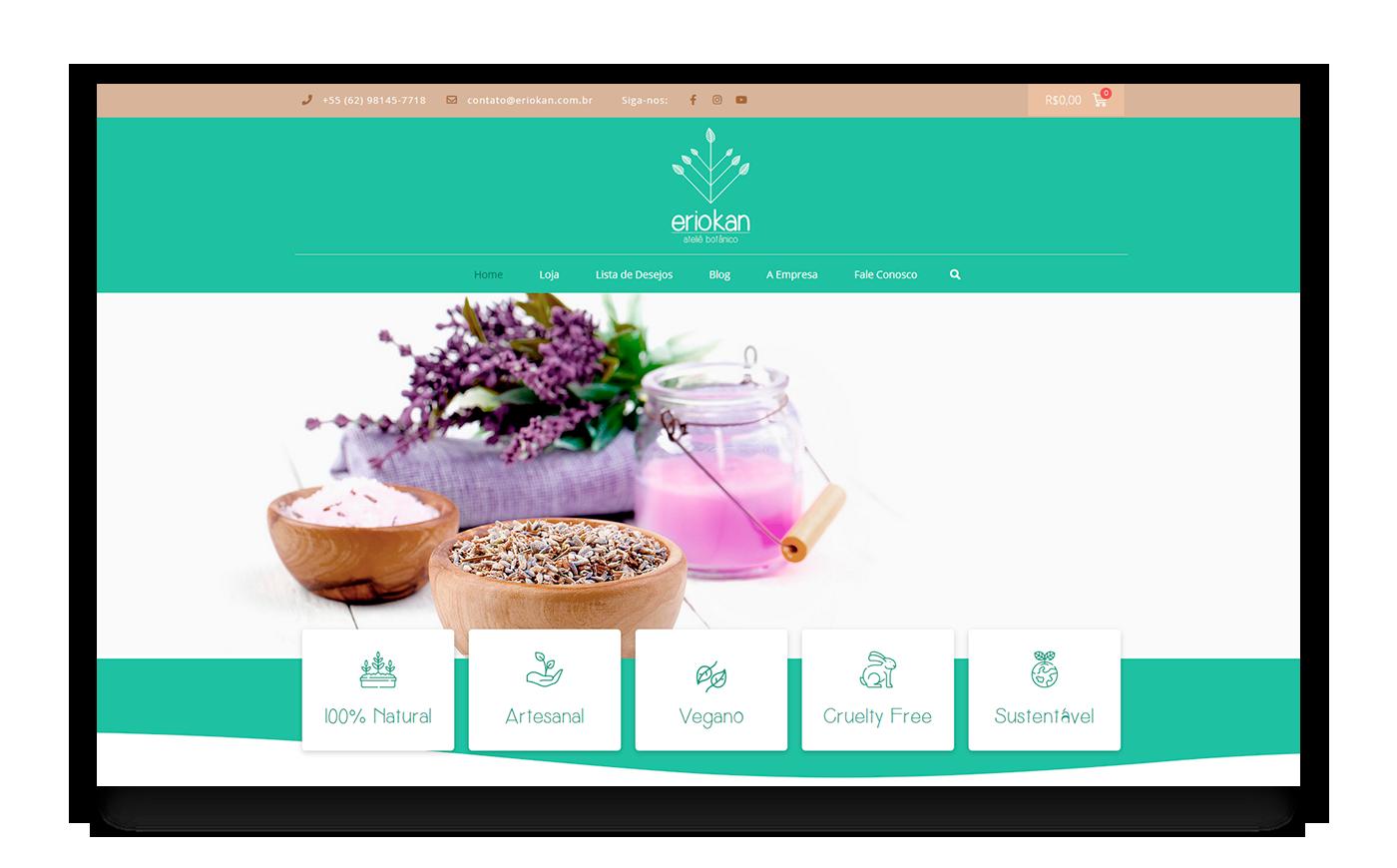 Eriokan - criação de sites e logotipos em Goiania - Buenosites